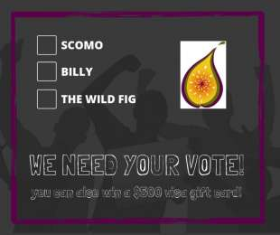Vote for The Wild Fig!